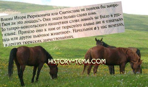 какие есть тюркизмы в русском языке