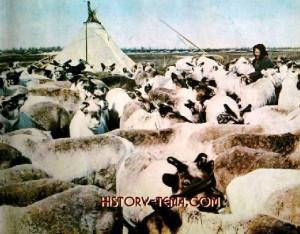 болшьшеземельская тундра - родина местных аборигенов