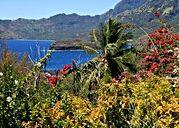 где живут маори