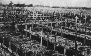сколько людей погибло в первую мировую войну