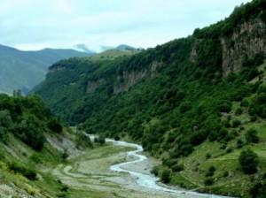 много ли лесов в горах кавказа