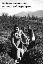 Как Грузия жила при советской власти