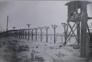 Когда в Коми стали отправлять заключенных