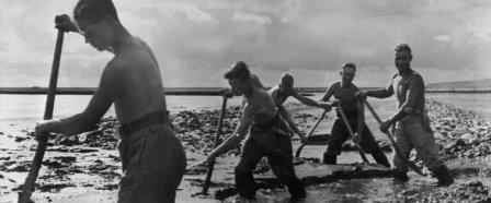 как нацисты боролись с кризисом