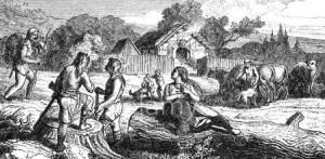 чем занимались древние германцы
