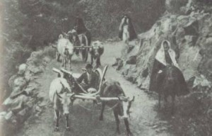 кавказская война почему кавказские горцы переселялись в турцию