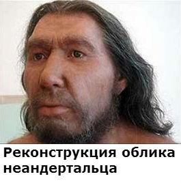 чем неандертальцы отличались от современных людей