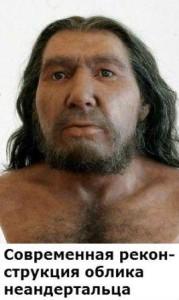 как выглядели неандертальцы и как к ним относились современные люди