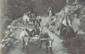 почему кавказские народы переселялись в турцию