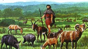 когда люди стали разводить животных и сажать культурные растения