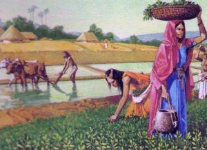 почему индийская цивилизация такая особенная