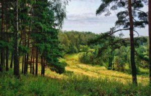 почему русские переселялись от орды в москву