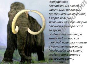 с чем охотились на мамонта