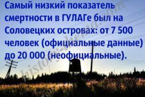 сколько заключенных было на Соловках