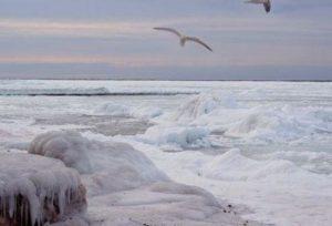черное и средиземное моря замерзают