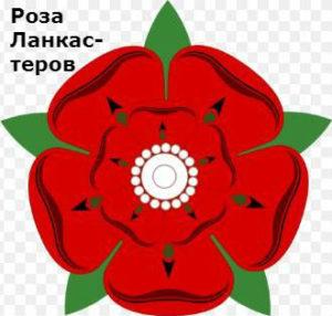 почему война алой и белой розы так называется