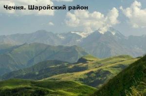 какие народы близки чеченцам ингушам