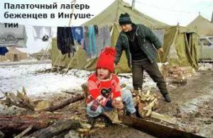 сколько чеченцев всего