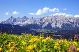 почему австрия так называется