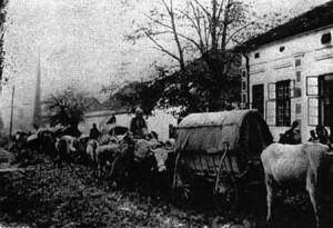 что было на балканах во время первой мировой войны
