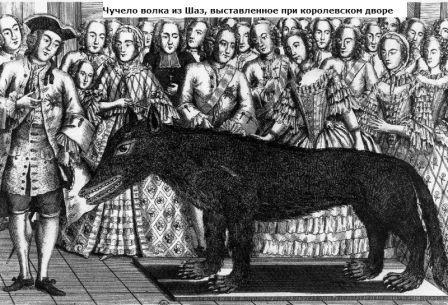 кем был Жеводанский зверь