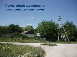 как выглядят села на кавказе