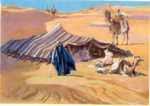 чем занимались арабы