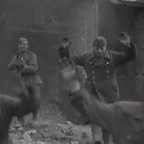 победные картинки второй мировой войны