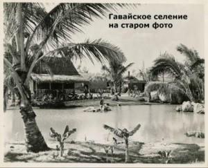 как выглядели деревни гавайцев
