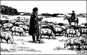 как жили кавказские горцы во время кавказской войны