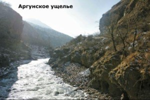 как русские войска захватывали чечню в кавказскую войну