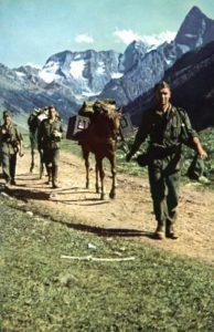 немцы приходили на кавказ
