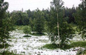 как малый ледниковый период отразился на россии