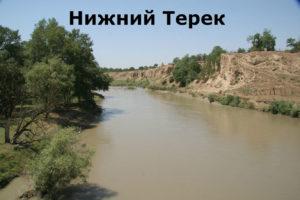 где живут чеченцы
