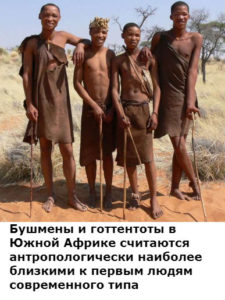 как выглядели самые первые люди современного типа люди разумные homo sapiens