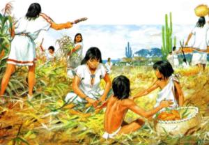 какие индейцы были наиболее культурно развитыми