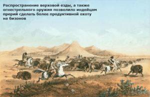 откуда у индейцев лошади