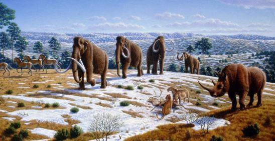 когда была мустьерская эпоха неандертальцев