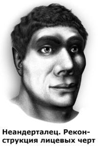 как выглядели неандертальцы