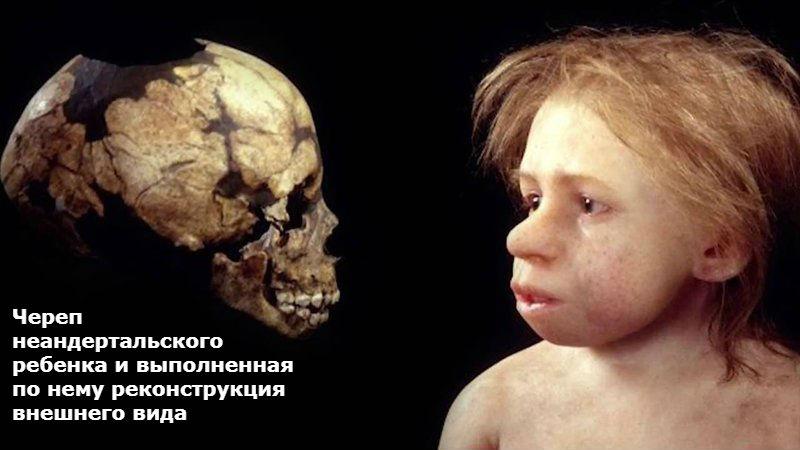 чем неандерталец отличался от современного человека
