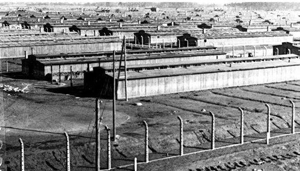 какие преступления совершал нацистский режим