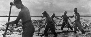 как гитлеровское правительство боролось с экономическим кризисом