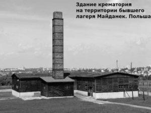 сколько разных народов погибло от холокоста