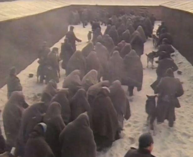 что нацисты делали когда к концентрационным лагерям подходили войска