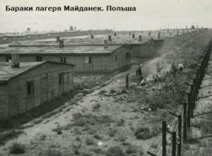 как выглядели нацистские концентрационные лагеря
