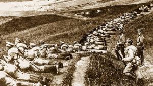 что делал николай вавилов во время первой мировой войны