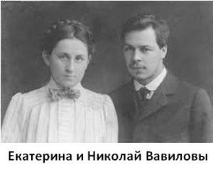 на ком был женат николай вавилов