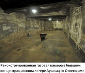 какие интересные факты есть о холокосте